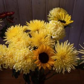 """Wolfgang Tillmans. """"Two Sunflowers"""". 135 x 201 cm.Inyección de tinta, montada sobre aluminio, en marco de artista/ Inkjet  Print mounted on aluminum, in artist's frame. Edition 1/1 + 1 A.P. 2019"""